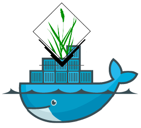Fun with docker and GRASS GIS software